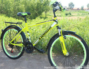 21 Speed MTB High Quality MTB for Sale pictures & photos