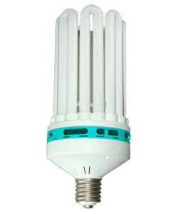 6u 17mm 125W CFL Bulb (BNF17-6U-A) pictures & photos