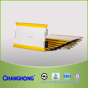Changhong Lithium-Ion Cell Series for Energy Storage Application (Li-ion Cell) Ifp, Ncm pictures & photos
