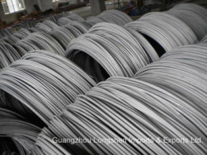 Hot Rolled/ Cold Rolled Steel Wire Rod