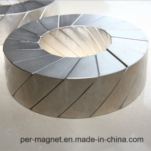 Permanent Magnet Linear Motor Magnetic Assembly pictures & photos