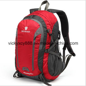 Double Shoulder Leisure Travel Sports Laptop Bag Pack (CY6891) pictures & photos