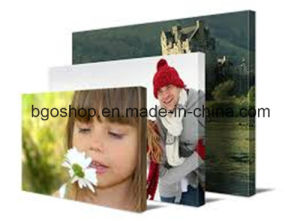 "Canvas Fabric Cotton Canvas Digital Printing (20""X30"" 3.8cm) pictures & photos"
