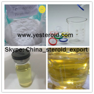 99% Purity Anabolic Hormone Steroid Powder Testosterone Propionate