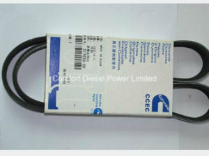 217638 Water Pump Belt for Cummins Engine Parts