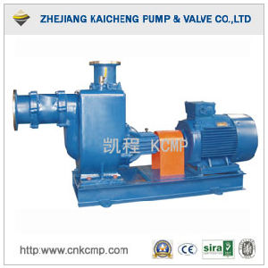 Zw Self Priming Sewage Pump