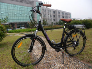 2016 Female City Electric Bike with En15194 (SWAN) pictures & photos