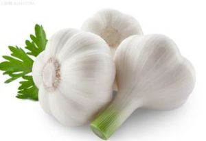 Manufacture Top Grade Plant Extract Factory Allicin /Garlic Extract pictures & photos