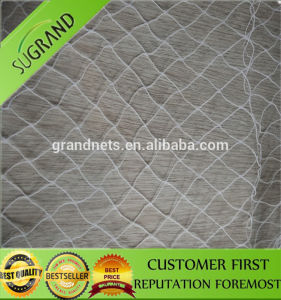 New Arrival Commercial Plastic Knotted Mesh Anti Bird Netting pictures & photos