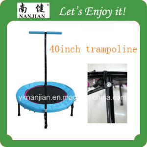 Cheap Home Bule Trampoline Bed pictures & photos