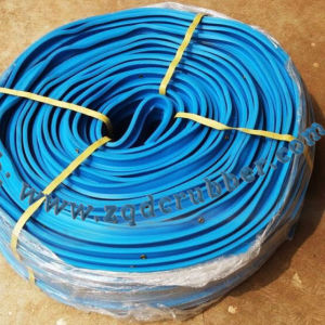 Rubber Seal Strip Sold to American with Competititve Price pictures & photos