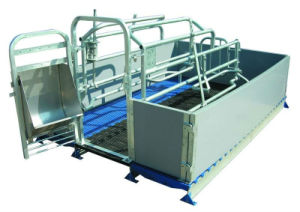 Livestock Farrowing Crate Farm Customized Steel Fabrication