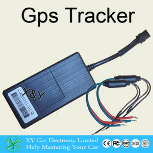 Auto Gps Tracking Devices Gps Car Tracker No Monthly Fee