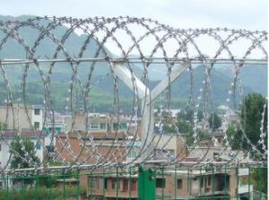 High Quality Galvanized Security Fence Razor Barbed Wire pictures & photos