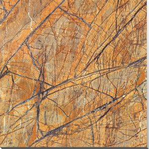 India′s Tropical Rinforest Decor Background Wall Marble Tile pictures & photos