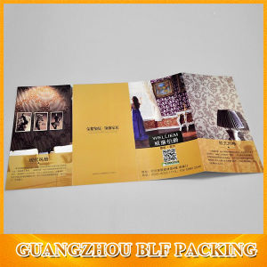 A4 Size Brochure Design pictures & photos