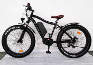 1000W Big Power Fat Tire Mountain Electric Bicycle