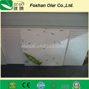 Calcium Silicate Acoustic Ceiling Board/ Building Material pictures & photos