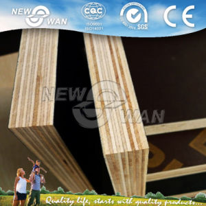 Shuttering Plywood/Film Faced Plywood/Construction Plywood pictures & photos