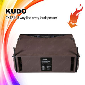 Kudo Dual 12 Inch Line Array Professional Loudspeaker pictures & photos