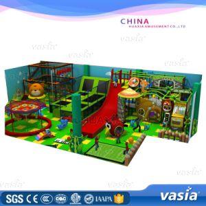 Newest Big Trampoline Park for Amusement Park by Vasia (VS6-160301-800A-31B) pictures & photos