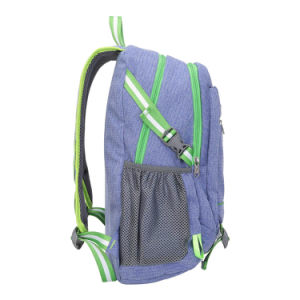 Taikes Purple Campus Hiking Backpack (201619007#) pictures & photos