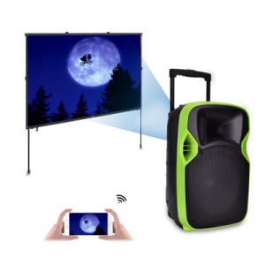 China Factory New Design 12 Inch Multimedia LED Projection Speaker pictures & photos