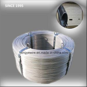Electric Garage Door High Carbon Extension Spring Steel Wire pictures & photos