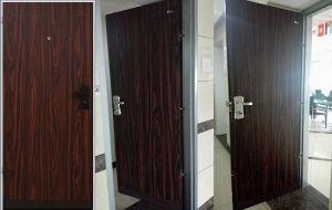 Israeli Security Door with Multi-Lock, Security Steel Door, Residential Doors