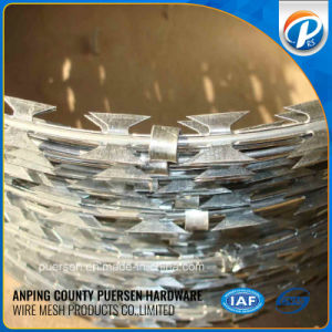 Low Price High Quality Galvanized Razor Wire, Concertina Razor Wire pictures & photos