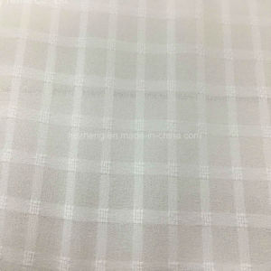 Hzs00330 Polyester Check Chiffon pictures & photos
