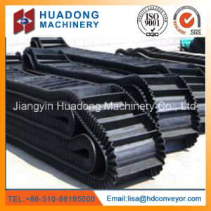 Moulded Edgesidewall Conveyor Belt ISO Standard pictures & photos