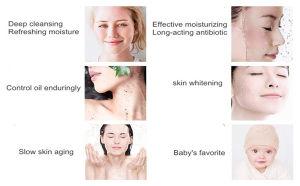 100% Natural Konjac Sponge Facial Puff Face Wash Cleansing Konjac Sponge pictures & photos