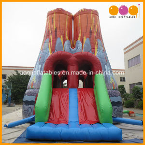 Popular Kids Toy Slide Inflatable Sport Game for Sale (AQ16238) pictures & photos