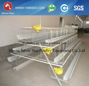 Africa/ Nigeria Poultry Farming Equipment for Layer Chickens (A3L90) pictures & photos