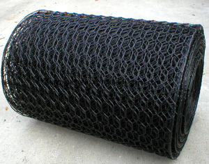 Hexagonal Wire Netting for Stone pictures & photos