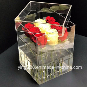 Top Selling Acrylic Plastic Buckets for Flowers pictures & photos