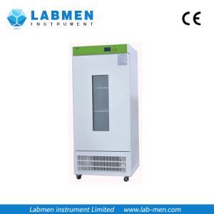 Water Jacket Electrothermal Thermostatic Incubator pictures & photos