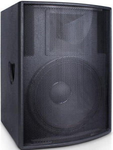 Single 10 Inch 200W Professional Speaker Audio System pictures & photos