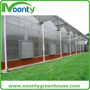 Standard Intelligent Multi-Span PC Greenhouse with Outside Shading Net System pictures & photos