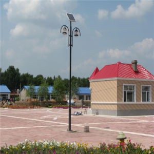 5m Steel Pole Pole Price for Street Light and Park Lot pictures & photos