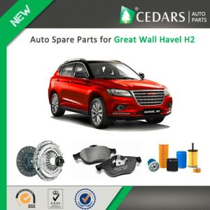 Chinese Auto Spare Parts for Great Wall Havel H2 pictures & photos