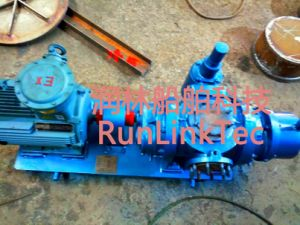 Screw Pump/Double Screw Pump/Twin Screw Pump/Fuel Oil Pump/2lb2-25-J/25m3/H pictures & photos