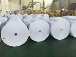 High White Woodfree Offset Paper for Printing School Book, Magazine, pictures & photos