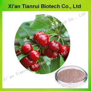 Factory Supply with Best Quality Acerola Cherry Extract pictures & photos