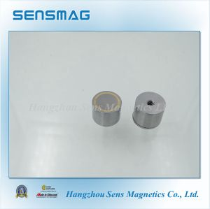 Rare Earth Permanent NdFeB Neodymium Magnetic Assembly for Motor Generator pictures & photos