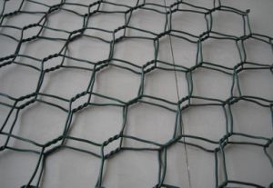 Anping Hexagonal Wire Mesh Box, Gabion Box Hexagonal Wire Mesh Factory, Galvanized Hexagonal Wire Mesh Fencing pictures & photos