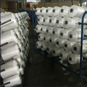 Twisted Nylon 6 DTY Textured Yarn for Weaving Knitting Socks and Fabric pictures & photos