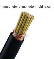 Fr PVC Insulted PVC Sheathed Braid Screened Control Cable pictures & photos