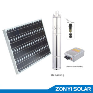 DC Solar Screw Series Pump with Metal Controller Box (water pump surface pump) pictures & photos